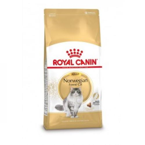 Kattenvoer Royal Canin Royal Canin Royal Canin Adult Norwegian Forest Cat kattenvoer 10 kg